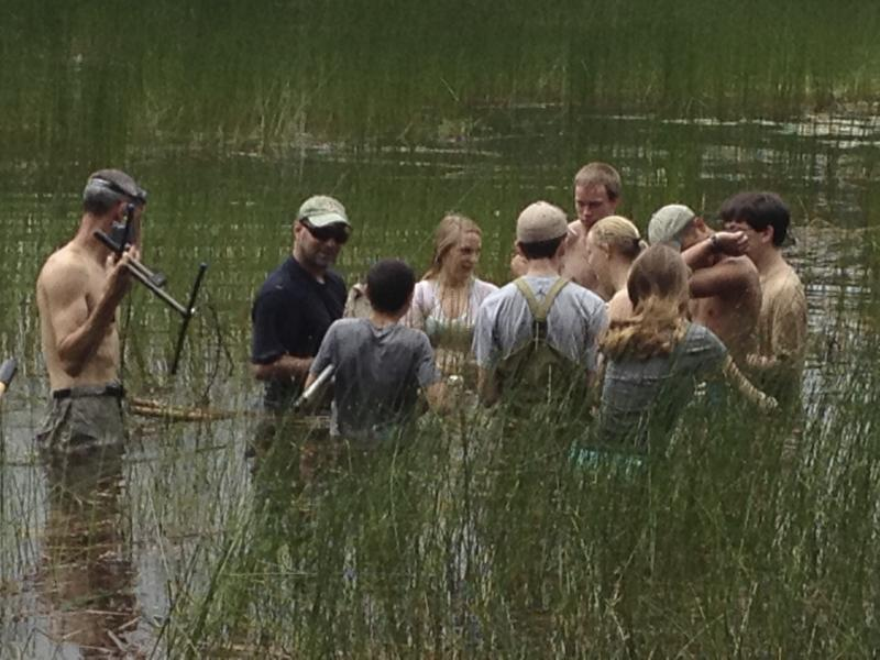 Students in the FASETS summer science course assist Mass Audubon researchers.