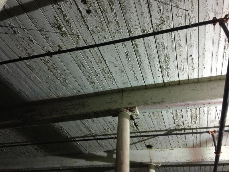 Peeling paint on ceiling of unfinished section of Manomet Place Phase 2