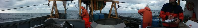 Cod fishing - for research - aboard the Barbara K. Peters of Scituate, MA.