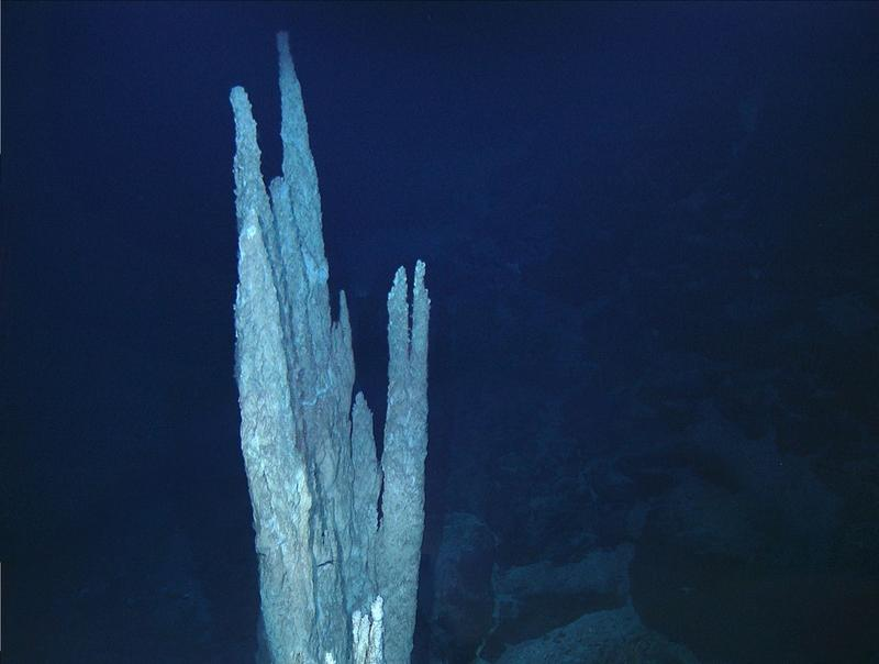 The carbonate towers of the Lost City hydrothermal field are the largest found to date - 30 to 60 meters in height.