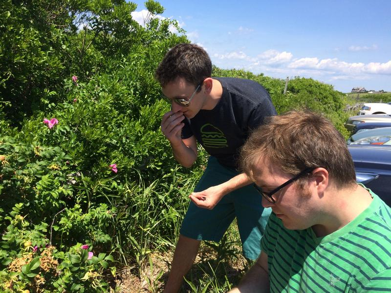 Noel Shumley and David Haddad ( foraging...and eating)