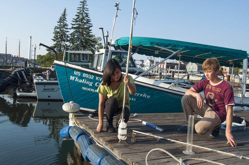 Volunteers for Buzzards Bay Coalition measuring water quality.