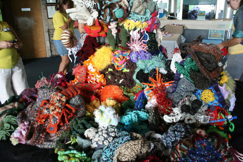 Michelle Schwengel Regala's Hook The Reef project incorporated crocheted contributions from hundreds of volunteers.
