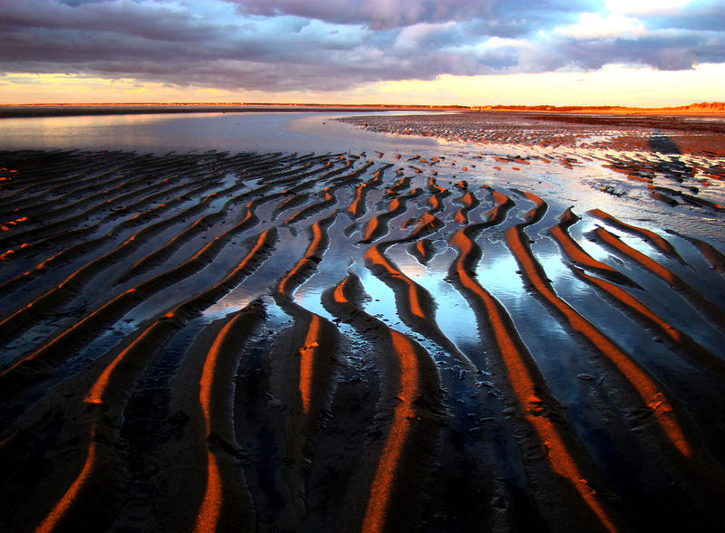 Low tide on the flats, Brewster.