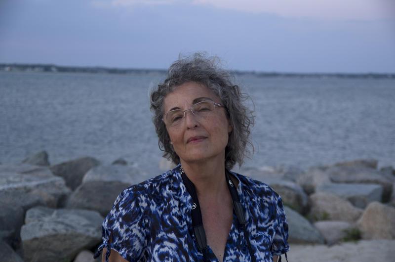 Poet Anca Vlasopolos