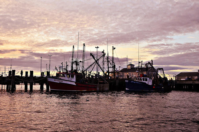 Fishing boats on the pier in Provincetown