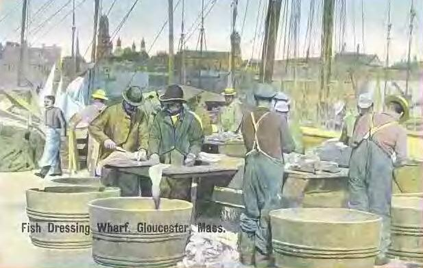 Cod fishing has been a mainstay of coastal New England cities, like Gloucester, for hundreds of years. Now, the cod fishery is virtually closed, and the population's future is in question..