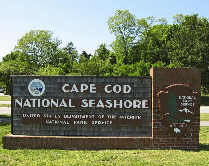 seashore advisory panel allowed to resume regular meetings