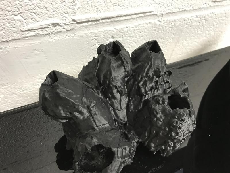 A user re-created a barnacle specimen using a 3-D printer.