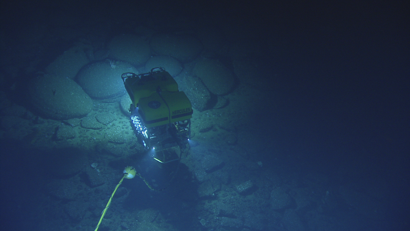 The team aboard the E/V Nautilus explores the deep sea using a remotely operated vehicle equipped with cameras and tools for bringing back samples of rocks or marine life.