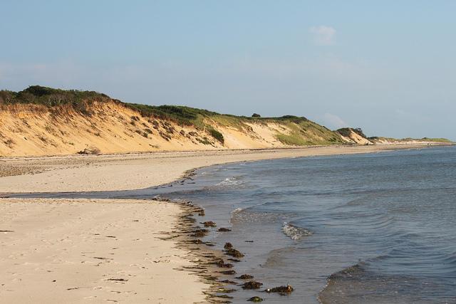 Wellfleet Dunes