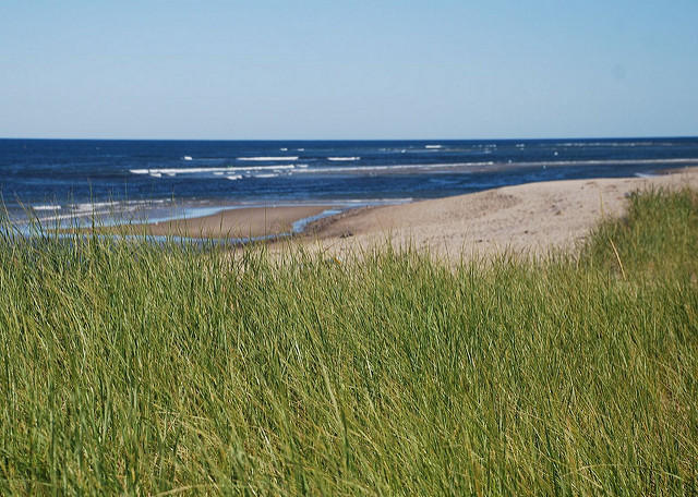 Surf viewed from the dunes, Coast Guard Beach, Cape Cod National Seashore