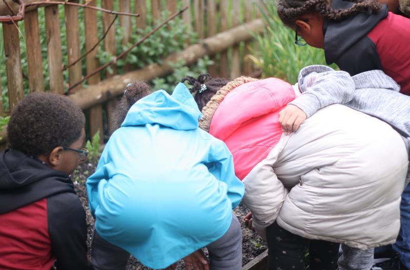 Children crouching in the Hyannis West School Garden