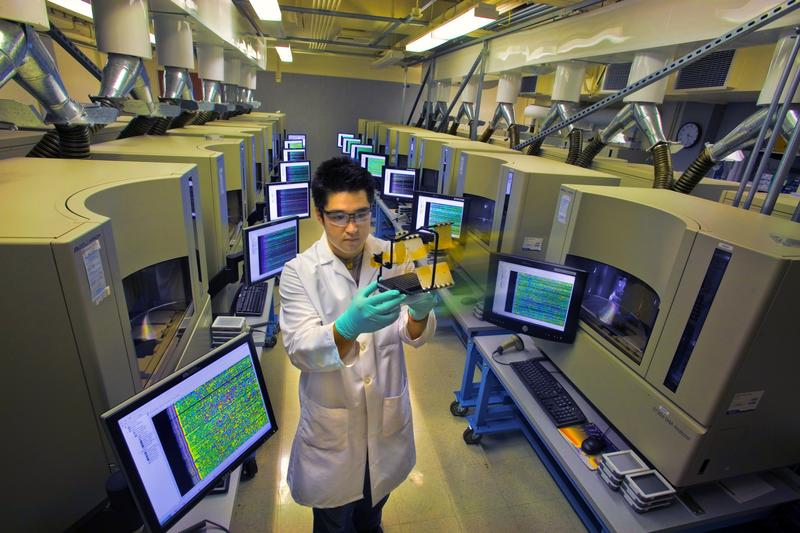 DNA Analyzers at the Joint Genome Institute