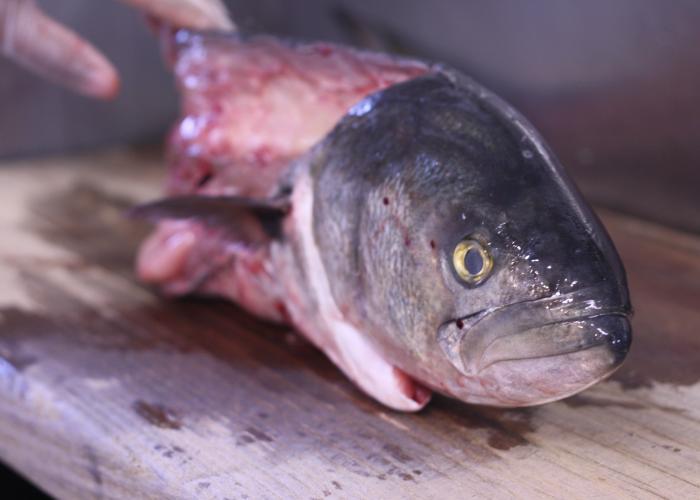 The zucchini bread recipe you need wcai for Salt fish head