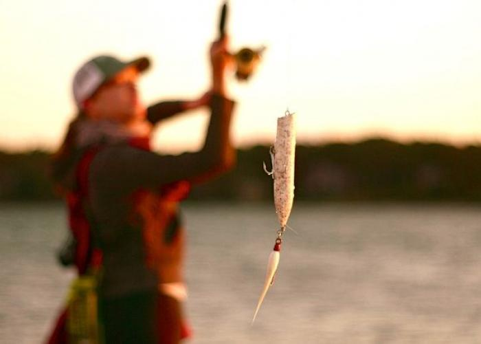 Best fishing in chatham ma for Fishing license ma