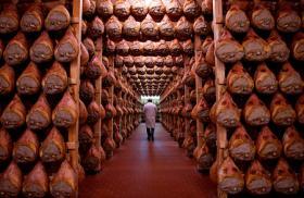 Curing Prosciutto di Parma