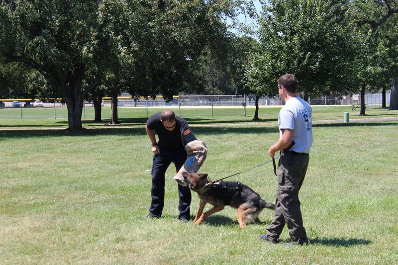 Ahen trains with a K9 handler in preparation for a day's work.
