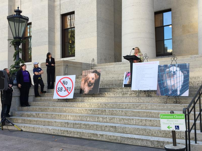 Rescues and Pet Advocates at Ohio Statehouse