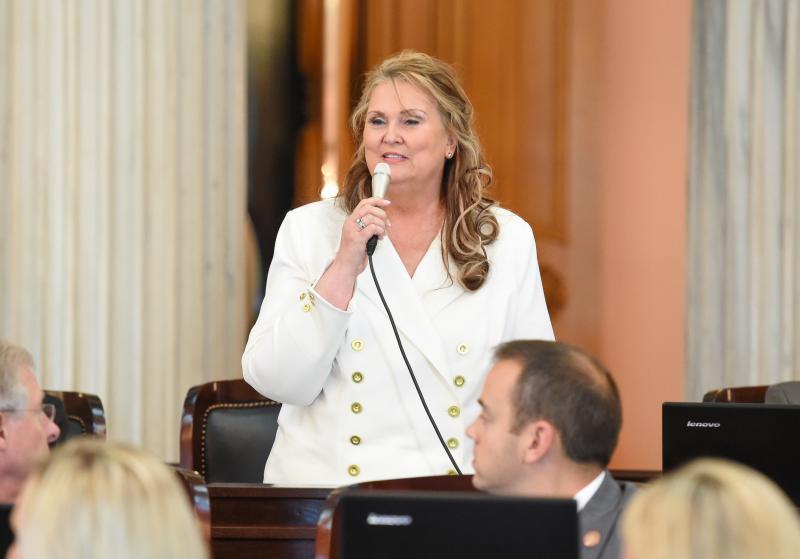 Representative Candice Keller