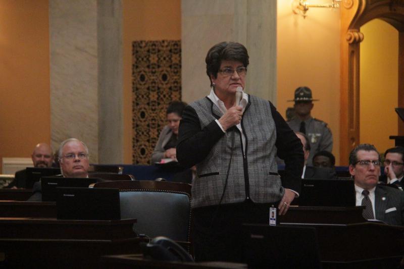 Sen. Peggy Lehner (R-Kettering) speaks on the Senate floor in January 2016.