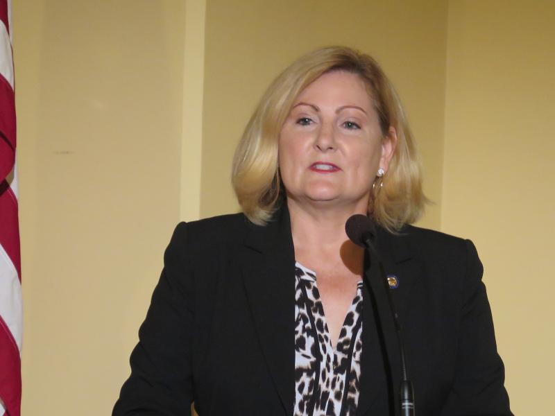 State Representative Teresa Fedor (D)