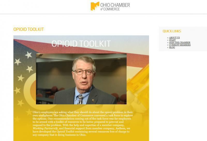 Screenshot from online opioid toolkit