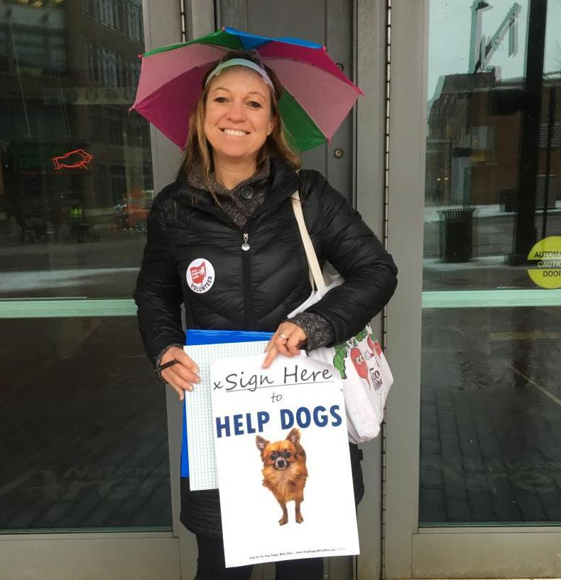 A volunteer collects signatures for the Stop Puppy Mills amendment outside Nationwide Arena in Columbus in February.