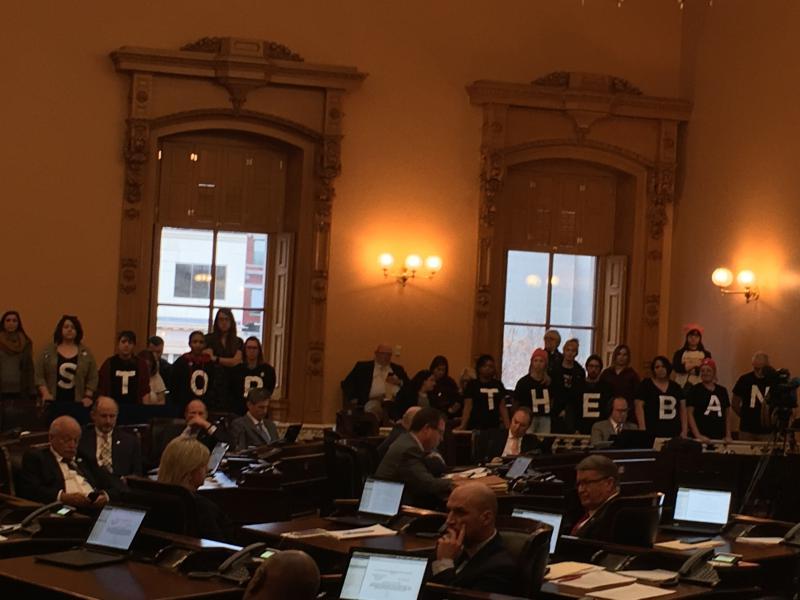 Protestors in the Ohio Senate chambers