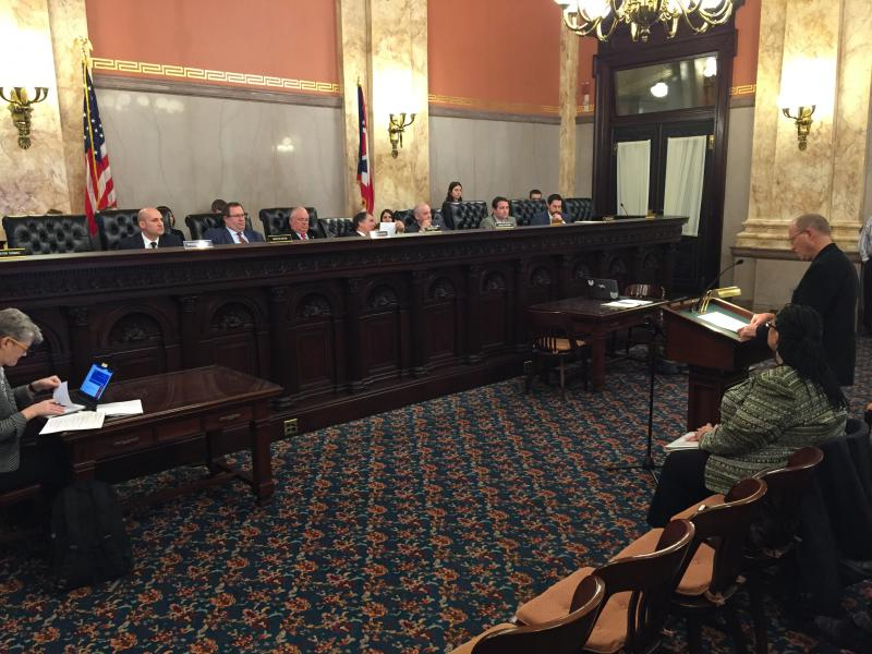 Senate Government Oversight and Reform holds hearing on HB228, the