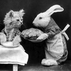 A rabbit serves a meal to three kittens
