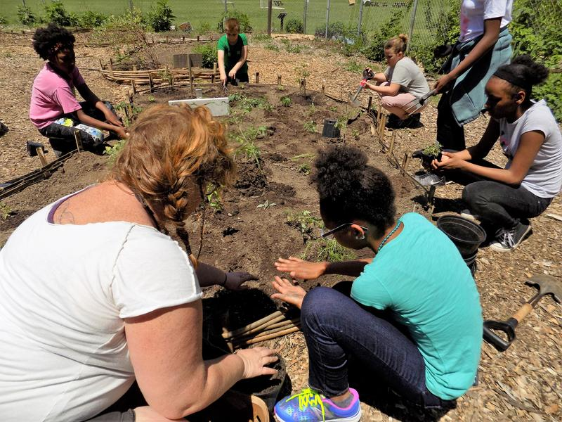 AmeriCorps FEAST garden mentor Madeline Peck helps students plant in the pizza garden.