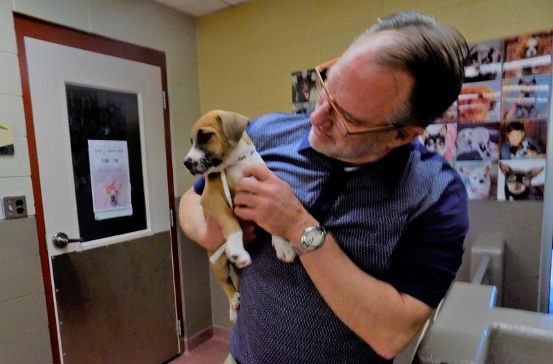 Asheville Humane Society Executive Director takes time to visit with a new arrival in the adoption center.