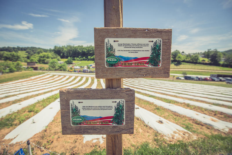 Hemp history plaques line the newly planted crops at Franny's Farm