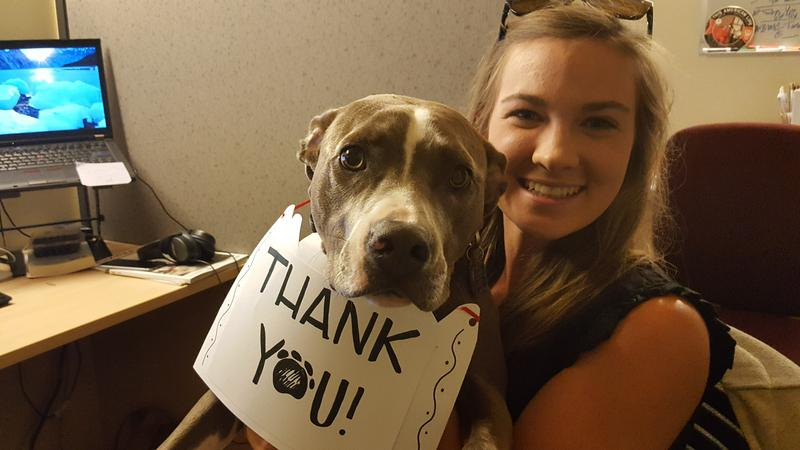 Our chief engineer's pup Chloe and  Membership Assistant Abby Bishop were quite popular on BPR's Facebook page during the pledge drive. When we met they goal, they thought they'd offer a great big THANK YOU!