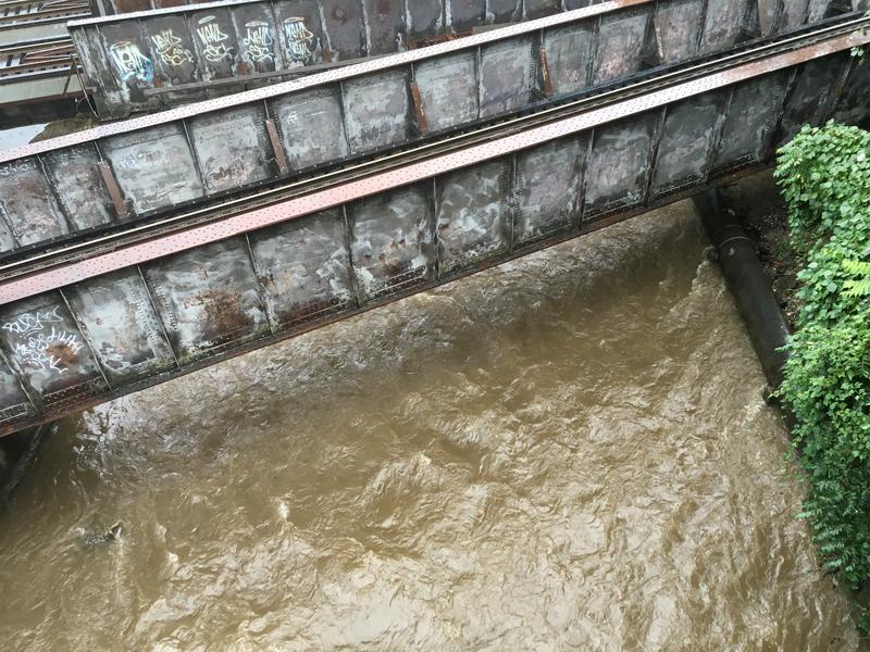 Swannanoa River from the McDowell Street Bridge