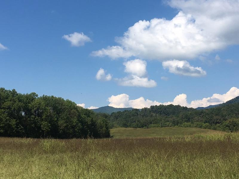 Ancient Cowee Mound rises above a field of hay in Macon County.