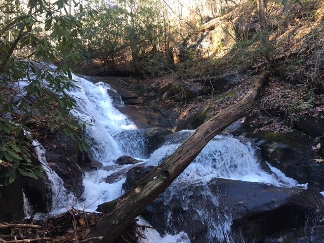 Western North Carolina's beautiful trails and waterfalls are just some of the features that bring in outdoor enthusiasts.