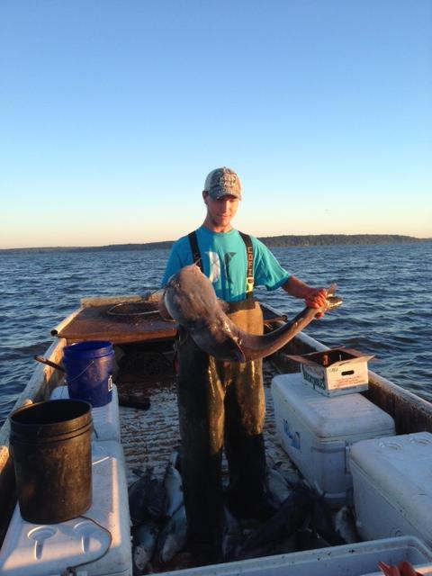 Sam Bowling tosses one of many blue catfish into an ice chest
