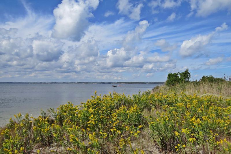 Overlooking Rehoboth Bay.