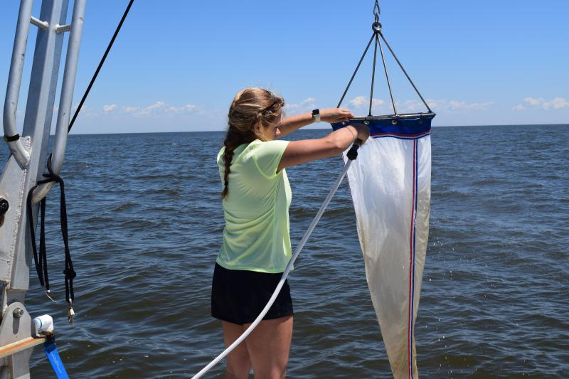 Haley Glos sprays the net to get microplastics down to the bottom.
