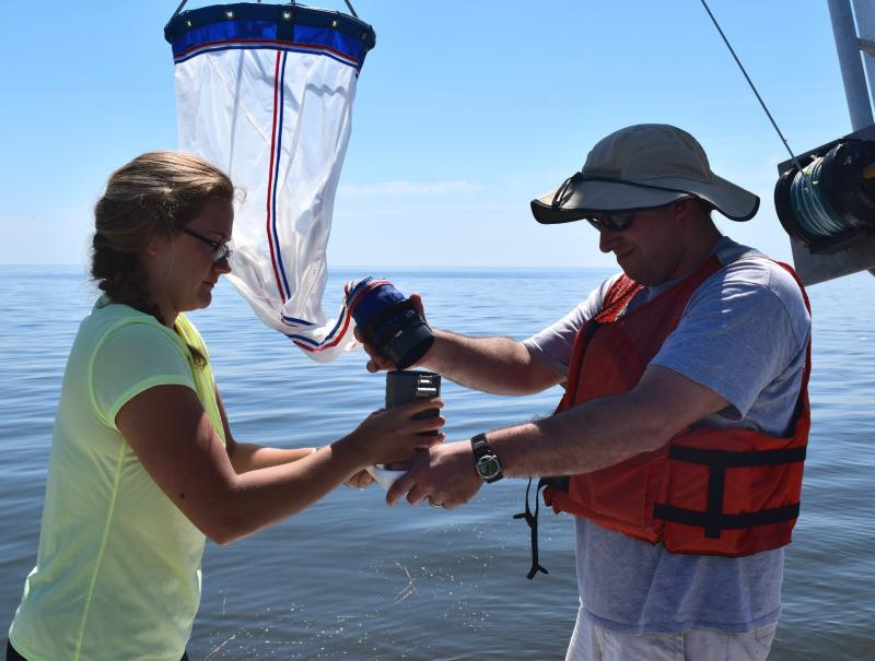 Jonathan Cohen and Haley Glos take a colander off of a net to see if they've collected any microplastics.