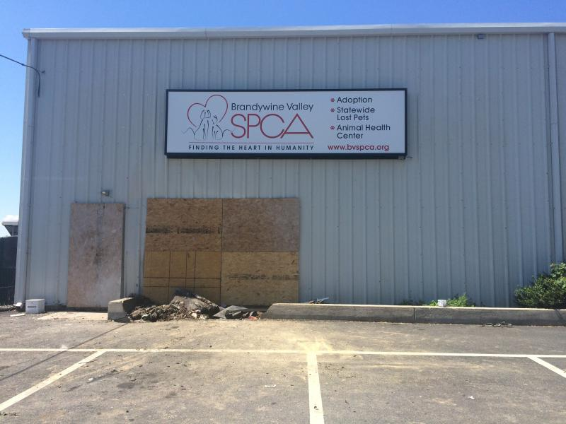 One side of the BVSPCA's New Castle building after a car crashed into it, starting a fire Sunday morning.