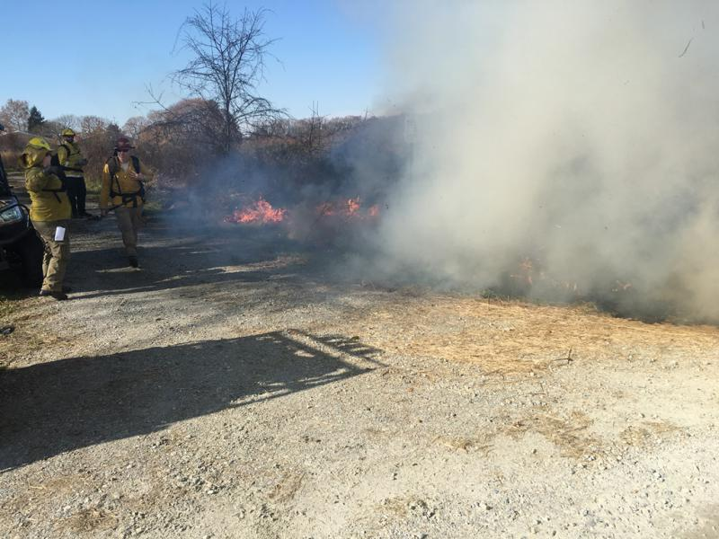USFWS and Delaware Forest Service conduct a 40-acre pollinator filed burn at Bombay Hook in December 2017.