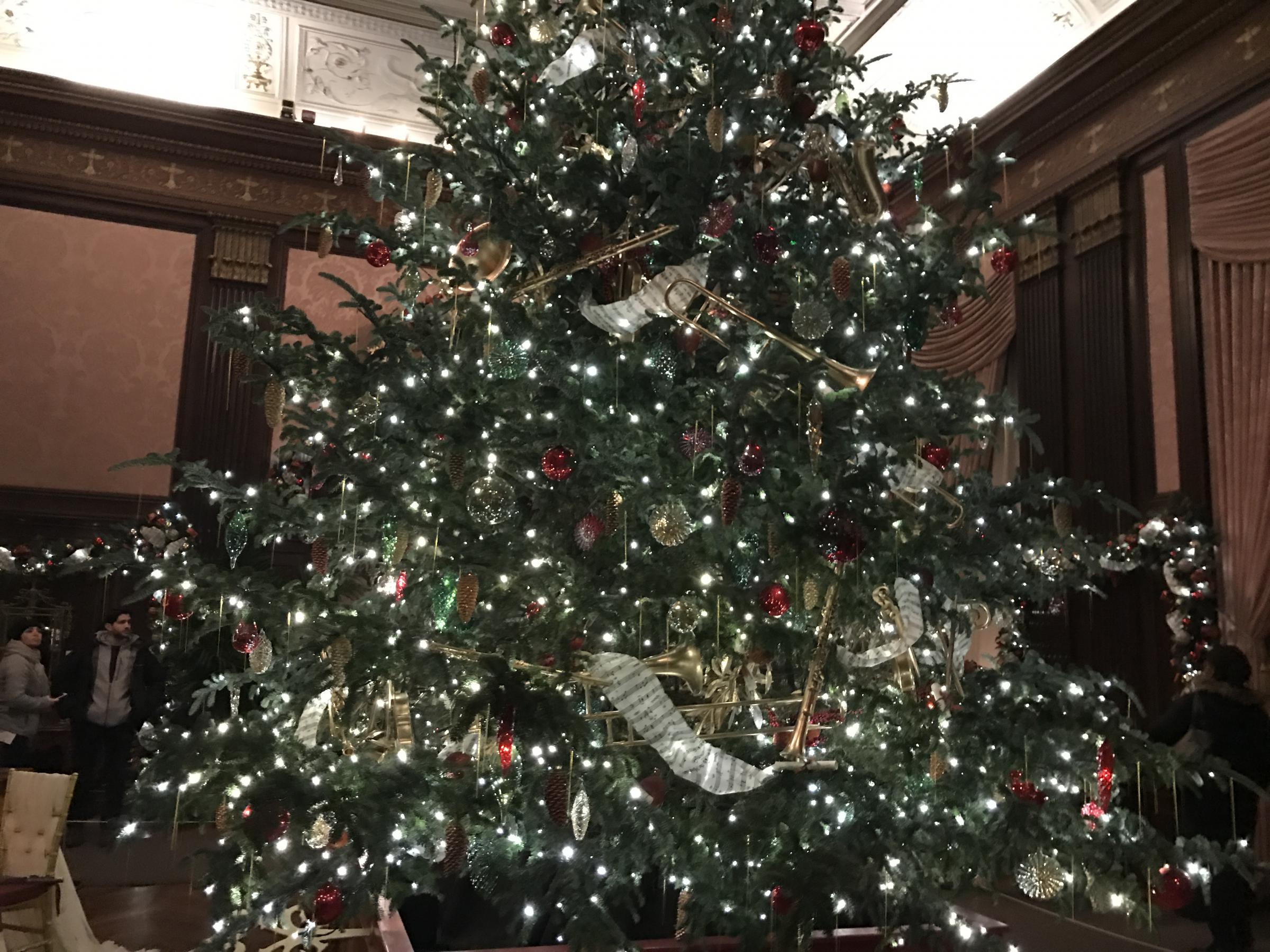 What to do with your Christmas tree after the holidays? \