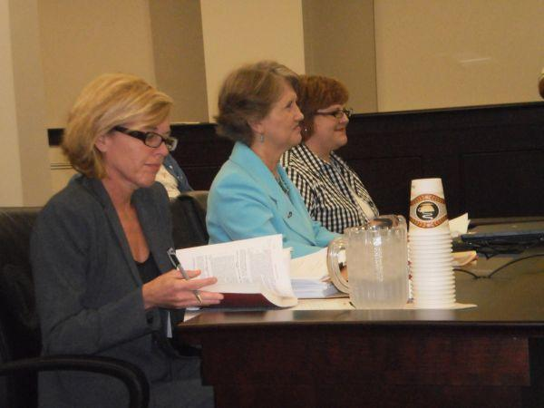 Secretary of State Elaine Walker with State Election Officials Tuesday at a legislative hearing.