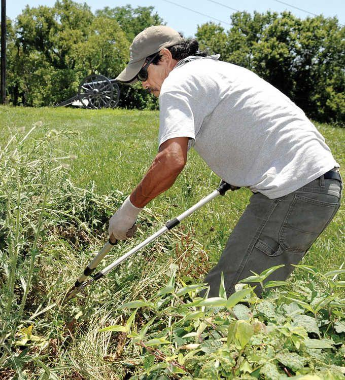 Aureilio Beltran, an employee of Doyle's Lawn and Landscaping of Winchester, cut away a thicket of weeds around the edge of the fort. The landscaping company has donated labor and material to help the cash-strapped historic site.