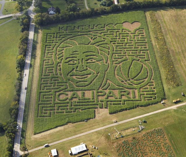 Kelley Farms, 6483 Old Richmond Road, recently completed its corn-maze rendering of Kentucky basketball coach John Calipari. It opens Wednesday.