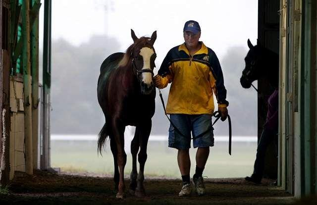 Trainer William Hall walks a horse after a morning workout in his barn at Turfway Park, Florence.