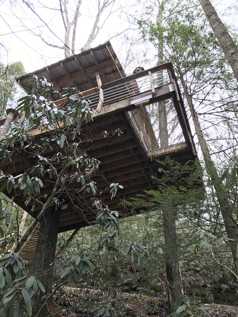 Looking up at the Sylvan Float treehouse